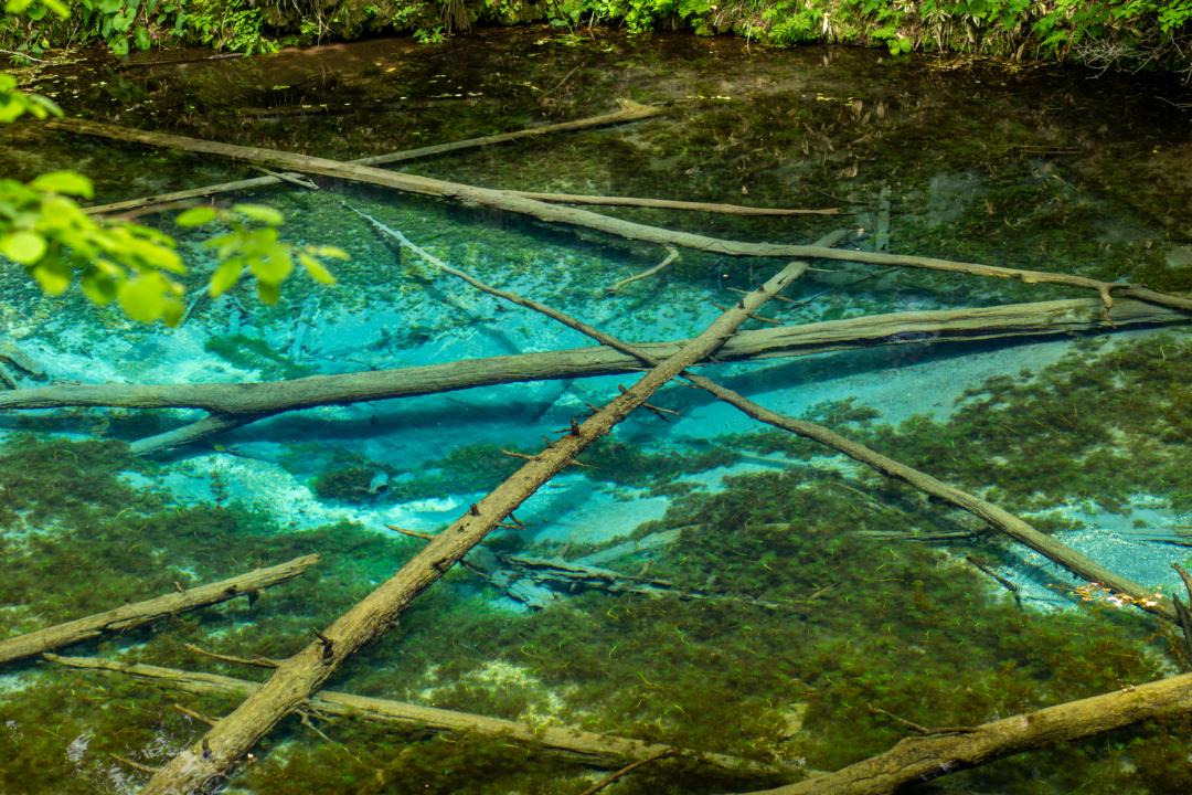 北海道の絶景スポット神の子池のアクセス、名前の由来、青い理由