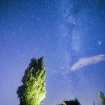 美瑛の穴場星空スポット「ケンとメリーの木」がおすすめ。